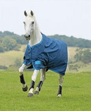 Shires Turn Out Rugs